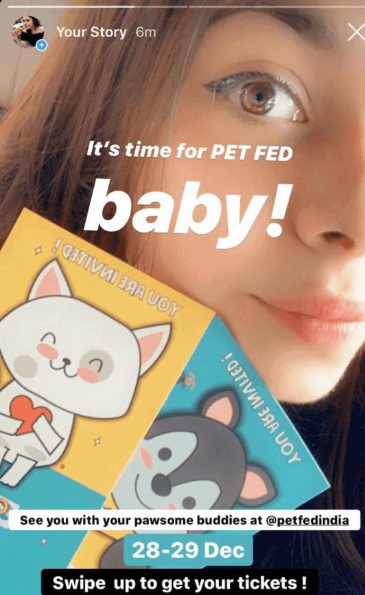 Pet Fed Case Study - Vidya Tikari