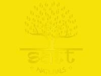 Satt Naturals