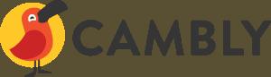 influencer marketing agency in mumbai - Confluencr - cambly